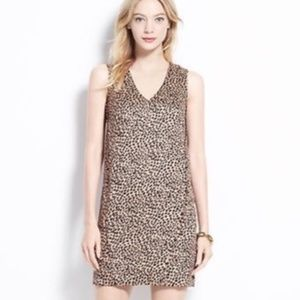 Ann Taylor textured cheetah shift dress sz SP NWOT